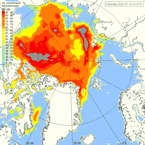 Sea ice yesterday - Satellite observation